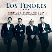 Medley Manzanero: Contigo Aprendí / Por Debajo de la Mesa / No Se Tú. by Los tenores