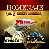 Homenaje A 2 Grandes by Various Artists