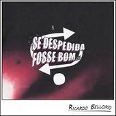 Se Despedida Fosse Bom de Ricardo Bellomo