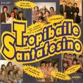 Tropibaile Santafesino de Various Artists