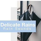 Delicate Rains by Rain Sounds