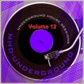 Underground House Sessions, Vol. 12 de Various Artists
