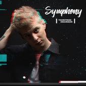 Symphony (Veiðimaður) (Single Edit) von Thorsteinn Einarsson