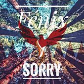 Sorry by Fénix