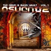 The Drum & Bass Vault, Vol. 1 de Messinian