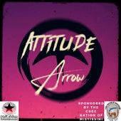 Attitude de Arrow