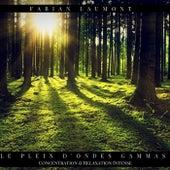 Le Plein D'ondes Gammas (Concentration & Relaxation Intense) von Fabian Laumont