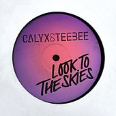 Look to the Skies by Calyx and TeeBee