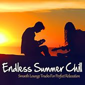 Endless Summer Chill (Smooth Lounge Tracks For Perfect Relaxation) by Various Artists