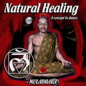 Natural Healing, Vol. 1 von Various Artists