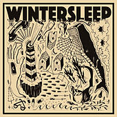 Free Fall / Fading Out by Wintersleep