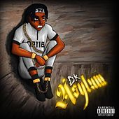 Asylum by DK