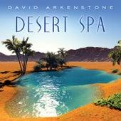 Call Of The Desert by David Arkenstone