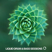 Liquid Drum & Bass Sessions 2019 Vol 3 von Various Artists