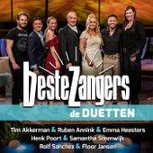 Beste Zangers Seizoen 12 (Aflevering 8 - Duetten) de Various Artists