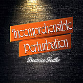 Incomprehensible Perturbation by Beatrice Fedler
