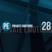 Private Emotions, Vol. 28 de Various Artists