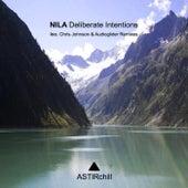 Deliberate Intentions von Nila