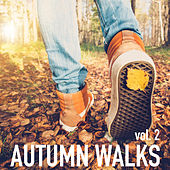 Autumn Walks vol. 2 by Various Artists
