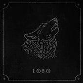 Lobo by Lobo