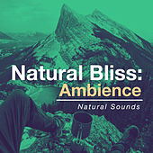 Natural Bliss: Ambience by Natural Sounds