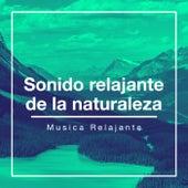 Sonido relajante de la naturaleza de Musica Relajante