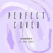 Perfect (Cover) by Andrey