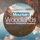 Mountain Woodlands de Musica de Relajación Academy