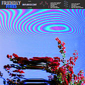 Inflorescent de Friendly Fires