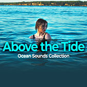 Above the Tide by Ocean Sounds Collection (1)