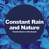 Constant Rain and Nature by Thunderstorms