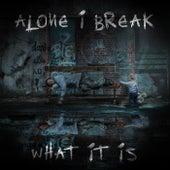 Alone I Break / What It Is by Gökberk