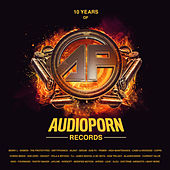 10 Years of Audioporn Records LP by Various Artists