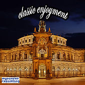 Classic Enjoyment by Various Artists
