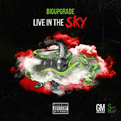 Live in the Sky by Big Upgrade