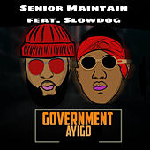 Government Ayigo de Senior Maintain