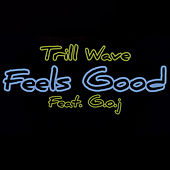 Feels Good (feat. G.O.J) von Trillwave