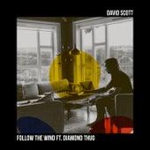 Follow the Wind by David Scott