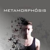 Metamorphósis de Stefan