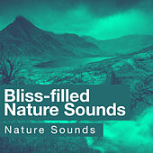 Bliss-filled Nature Sounds by Nature Sounds (1)