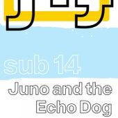 Sub 14 von Juno and the Echo Dog