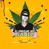 El Corrido del Pigmeo (feat. Slayter & Cabo) by Muers