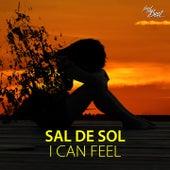 I Can Feel by Sal De Sol