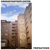 Trips & Ticks von Grossstadtgeflüster