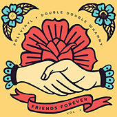 Friends Forever, Vol. 2: Polyvinyl + Double Double Whammy by Various Artists