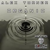 Organic - Single de Alex Turner