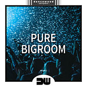 Pure Bigroom, Vol. 1 - EP by Various Artists
