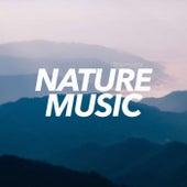Nature Music - Single de Nature Sounds Nature Music (1)
