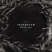 Heart Like a Grave by Insomnium