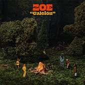 Calefón de Zoe Gotusso